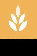 Logo Best Masters